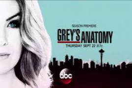 Greys Anatomy Season 13 Episode 3